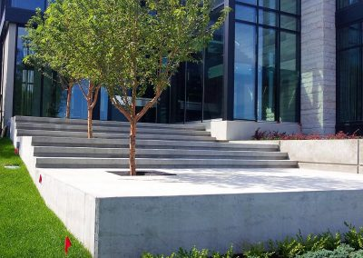 Solid White New Concrete